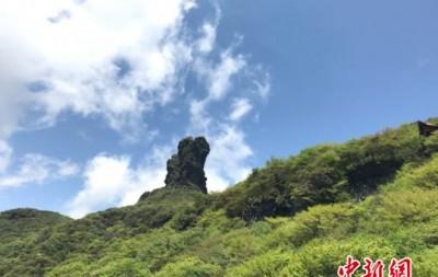 """中国长江上游依托绿色屏障释放""""生态红利"""""""